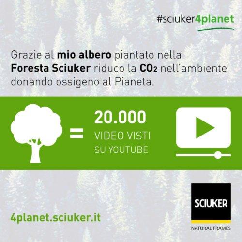 Albero VS Youtube