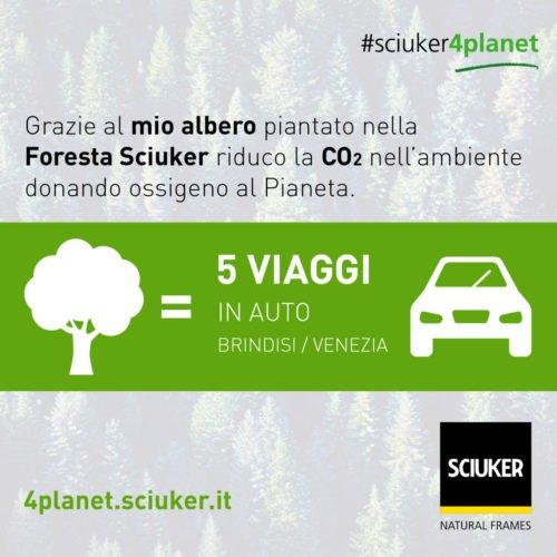 Albero VS auto