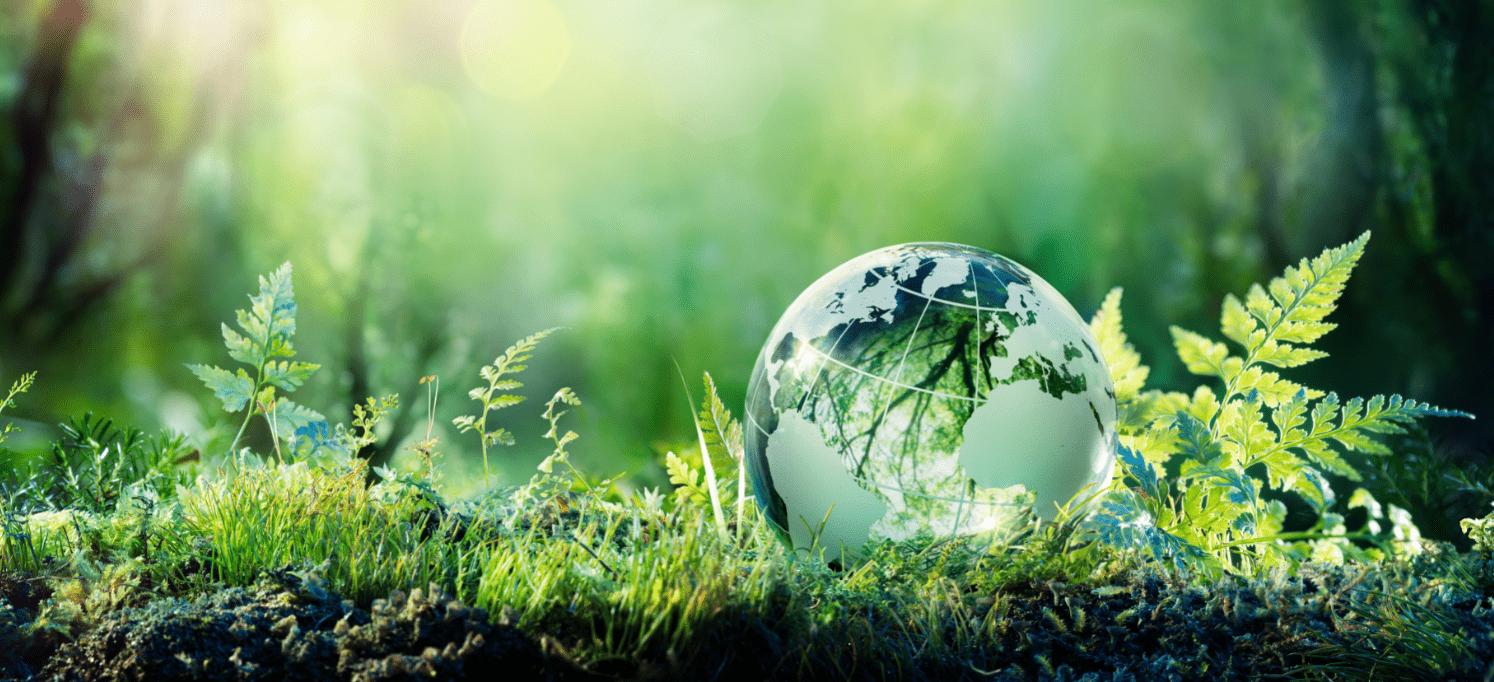 Ecobonus 50% – Come funziona?